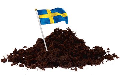 vanligaste sättet att träffa en partner Björlanda och Torslanda